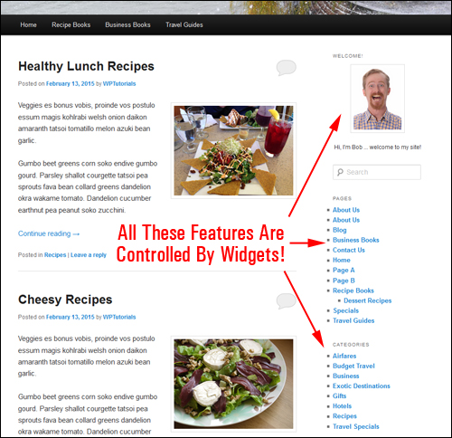 WP widgets help make managing and using WordPress easy